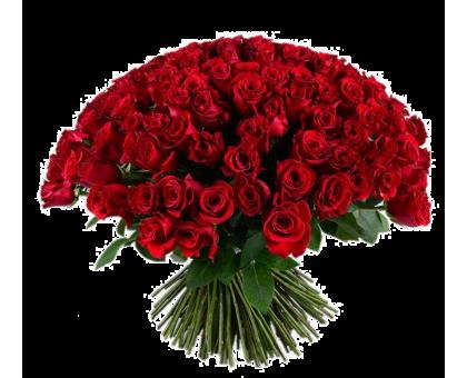 Букет из 101 красной розы средняя
