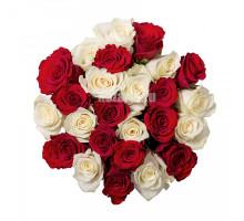 Букет из 25 белых и красных роз средней длины