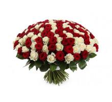 Букет из 101 белой и красной высоких роз