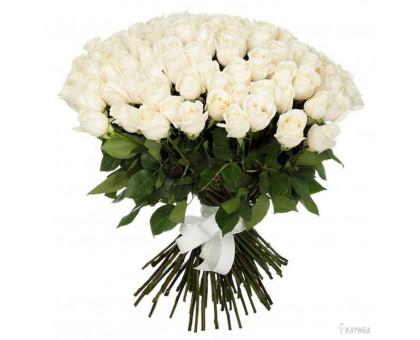Букет из 101 белой розы средней длины