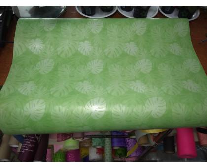 Бумага глянцевая зеленый папоротник
