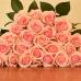 Роза Luciano